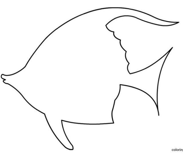 Fish Outline Template Delli Beriberi Co