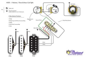 TheBlog: Humbucker HSS, HSH and Coil Tapping | guitar