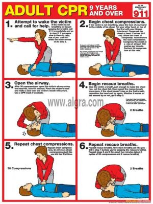 17 images about How To CPR  The Best Tips for Performing