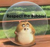 respect the bubble
