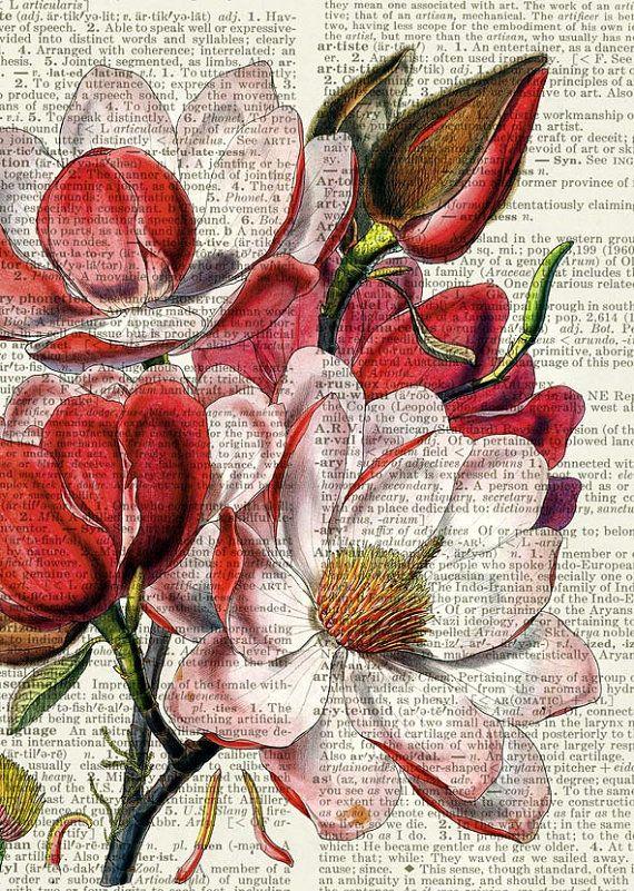 magnolia print, vintage flower artwork on vintage dictionary page, vintage dictionary art print, wall art prints, upcycled book