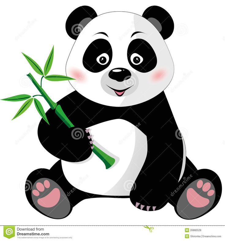 50 best images about Panda Cuties on Pinterest