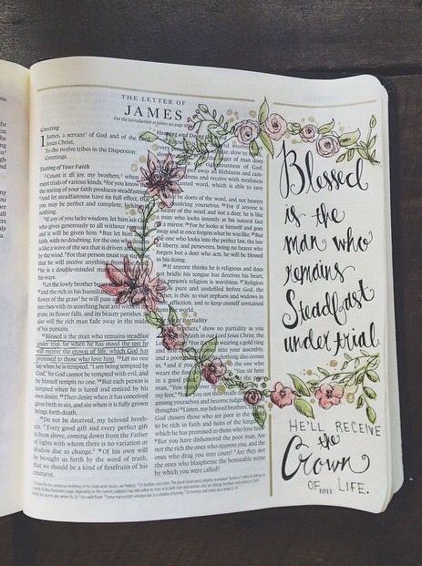 93 Best James Bible Journaling By Book Images On Pinterest