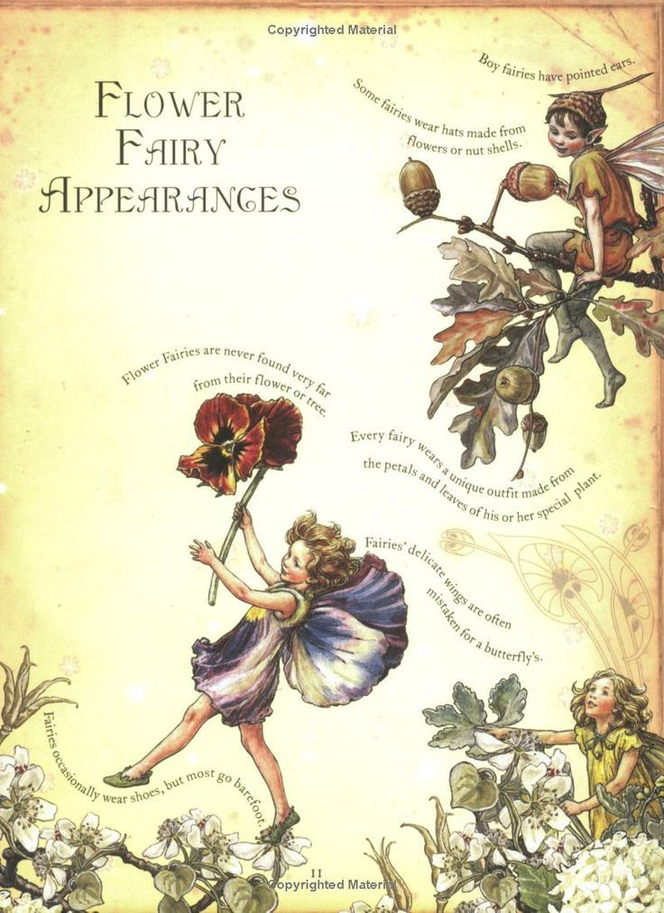 1000 Images About Fairy Poetry And Art On Pinterest