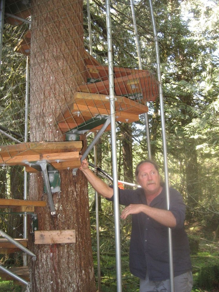 42 Best Images About Treehouse On Pinterest Trees A Tree And Oregon | Spiral Staircase Tree Trunk