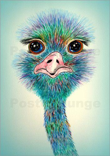 Poster Vogel Strau Stanislaw Fr Kinder Straue Vogel