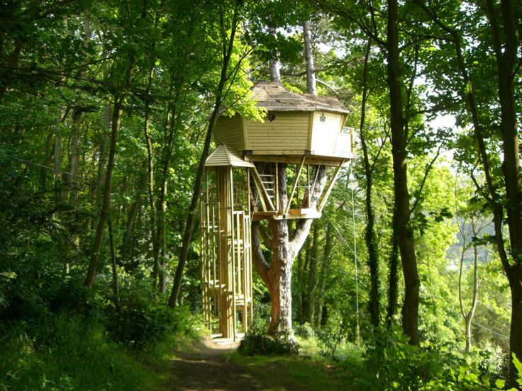 663 Best Ideas About Living In The Trees On Pinterest
