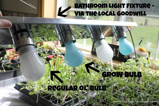 1000+ Ideas About Indoor Greenhouse On Pinterest