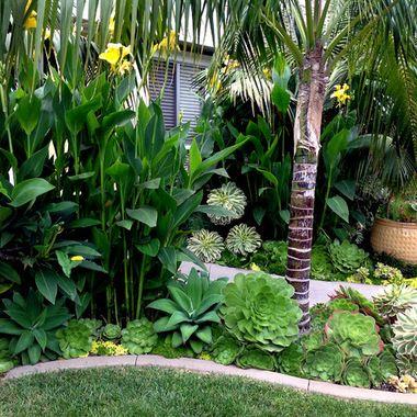 tropical garden design 25+ best ideas about Tropical garden design on Pinterest