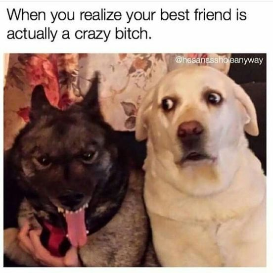 25 Best Friends Quotes That Are Perfect For Any Social Media Caption