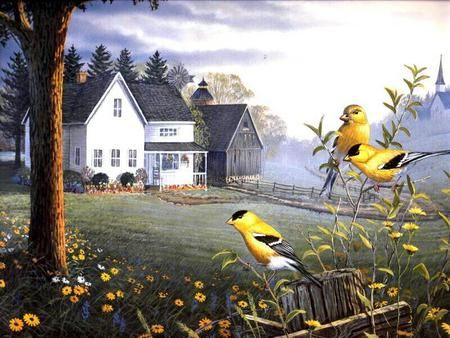 40 best images about ART--SAM TIMM on Pinterest | Ducks ...