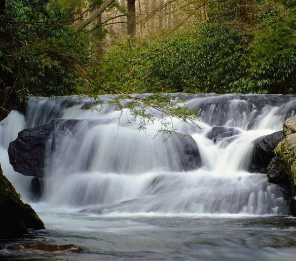 Top 25 ideas about Waterfalls In Pa on Pinterest ...