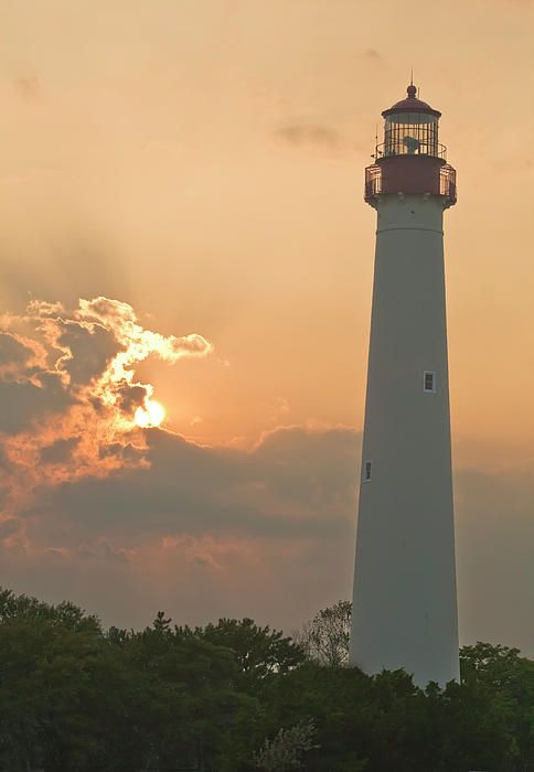 1000 Images About Visit Cape May On Pinterest Fine Dining Dolphins And Beaches