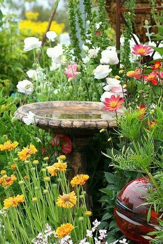 10+ images about Bird bath ideas on Pinterest | Gardens ... on Birds Backyard Landscapes  id=11985