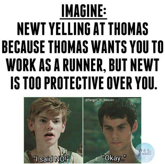 Draco And Malfoy Imagines N Y