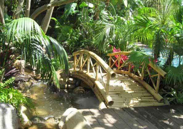 bamboo garden bridge 14 best images about Bamboozled - everything bamboo! on