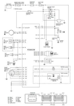Honda Foreman Wiring Diagram http:wwwhondaforeman146honda  | Tips and Tricks
