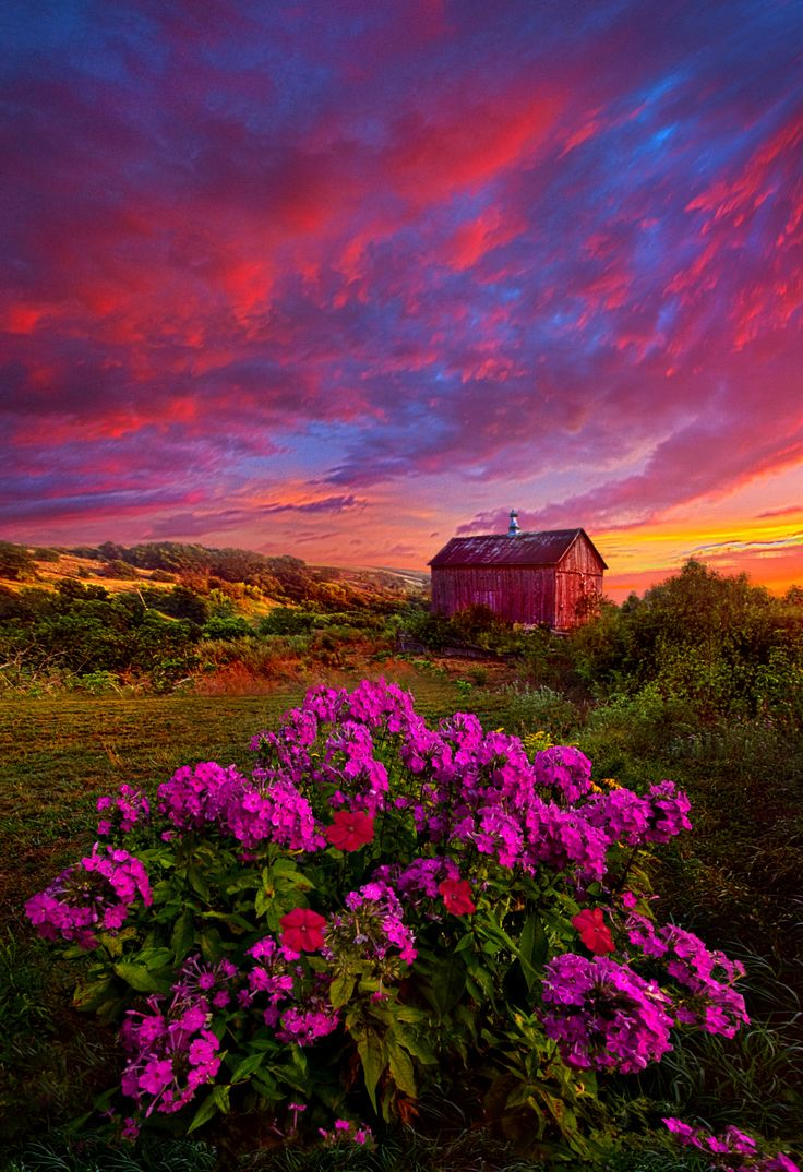 Live In The Moment Sunrise Flower Meadow Barn