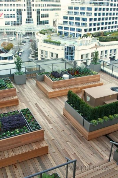 rooftop garden 25+ best ideas about Rooftop Gardens on Pinterest | In