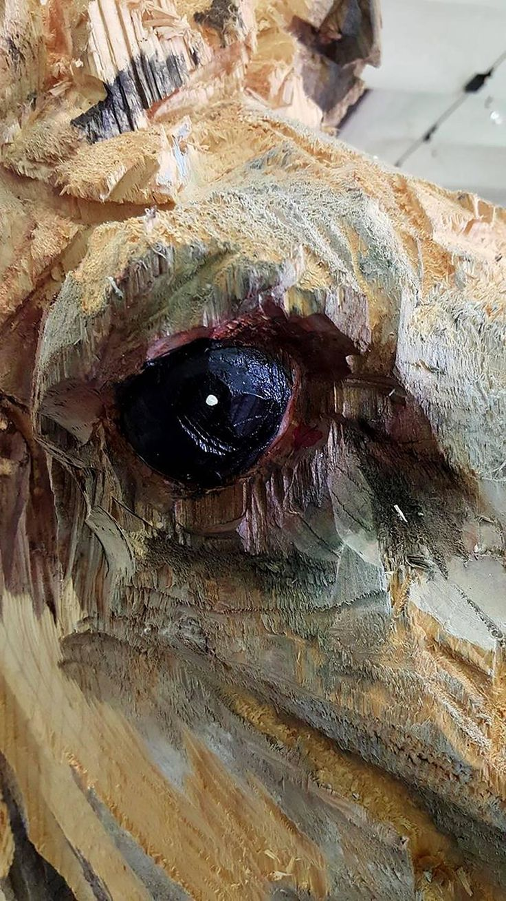 17 Best Images About Tree Carving On Pinterest Ocean