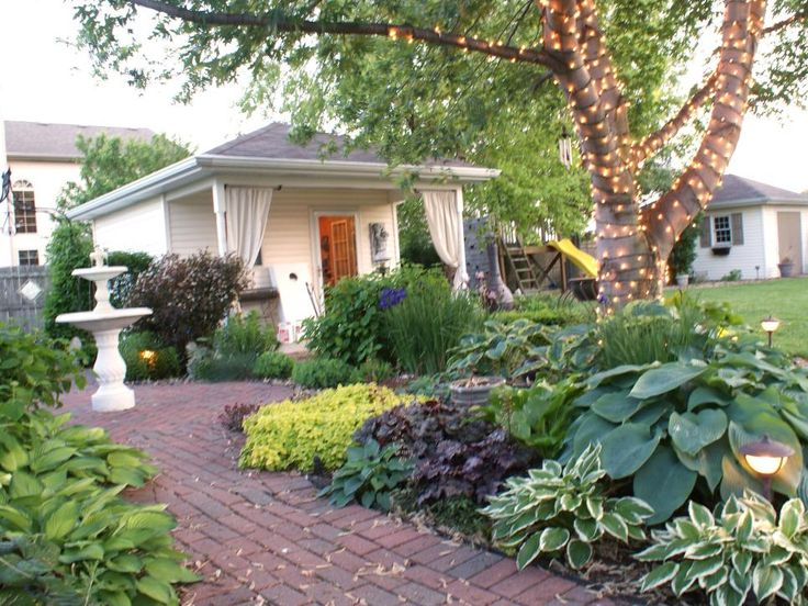 32 best images about Landscape Special Plants 27th on ... on Shady Yard Ideas  id=55488