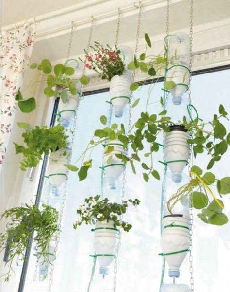 window indoor garden pods 17 Best ideas about Indoor Window Garden on Pinterest