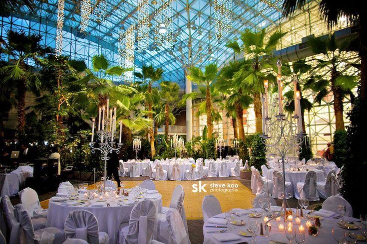 Navy Pier Crystal Gardens Chicago Wedding Venue