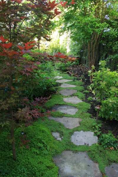 shade garden path ideas 703 best images about stone path ideas on Pinterest