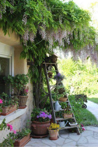 small garden ideas pinterest Best 25+ Small gardens ideas on Pinterest   Small garden