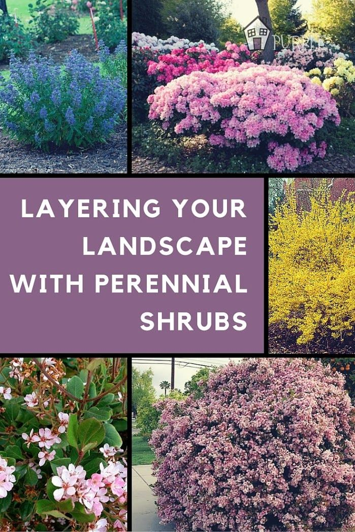 Better Homes And Gardens Small Yard Ideas