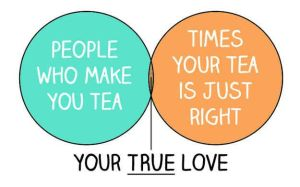 22 Venn Diagrams Only British People Will Understand