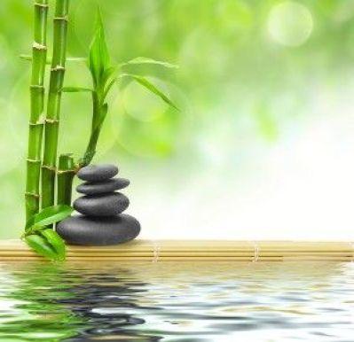 https://i1.wp.com/s-media-cache-ak0.pinimg.com/736x/e1/f1/c2/e1f1c2828fe473730a65aa4f1de45d00--zen-gardens-water-gardens.jpg?resize=399%2C386&ssl=1