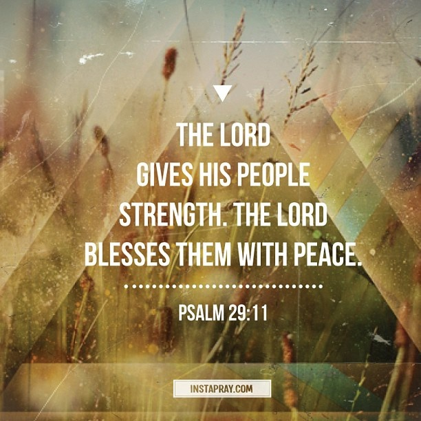 Psalm 29:11 The Lord gives His people strength. The Lord blesses them with peace