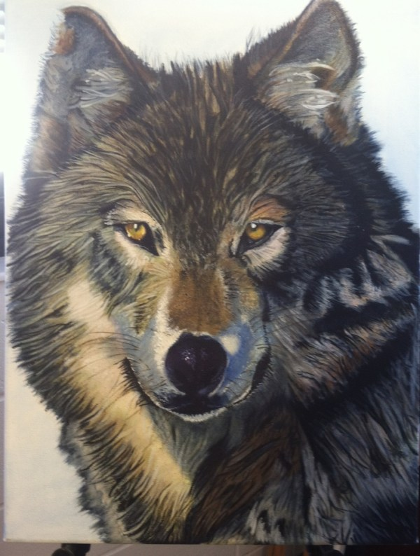 13 best images about Wolf on Pinterest | Oil on canvas ...