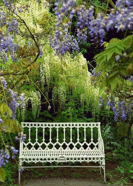 beautiful garden benches garden bench: I really want a beautiful bench to put under