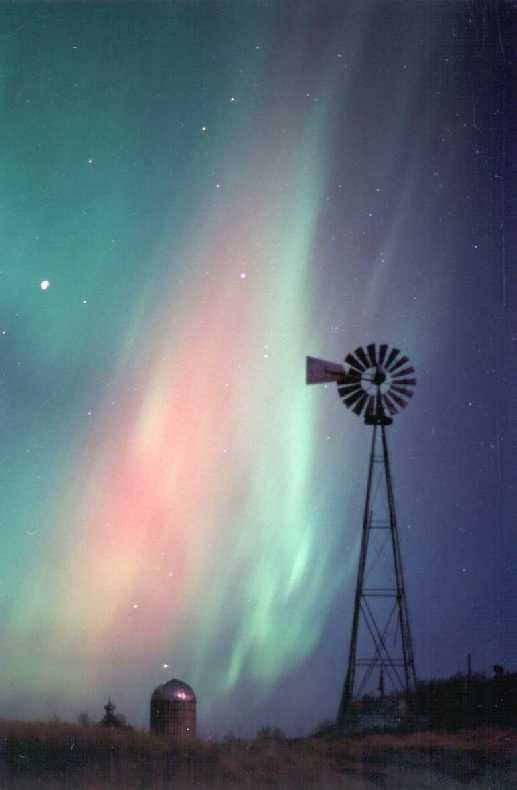 Theodore And Northern Lights