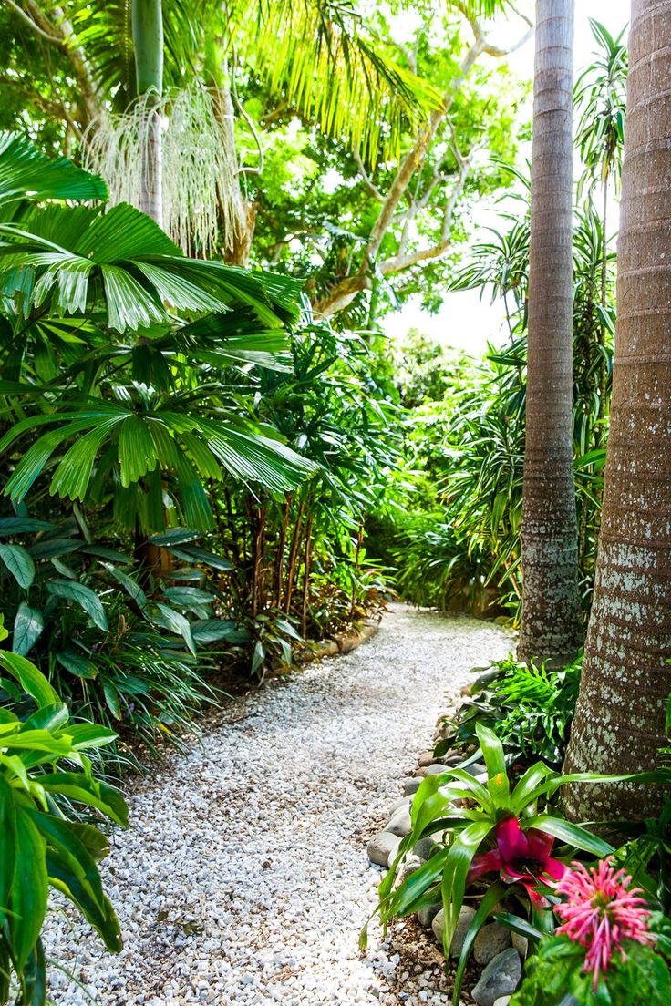 372 best images about tropical landscaping ideas on Pinterest on Tropical Backyard Landscaping Ideas  id=11158