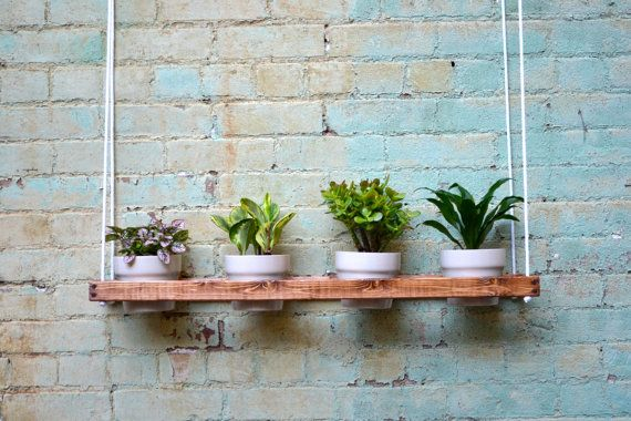Best 25+ Indoor Wall Planters Ideas On Pinterest
