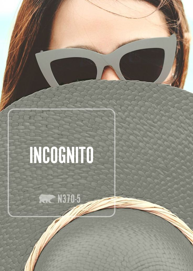 Use BEHR Incognito Paint In Your New Bedroom For A