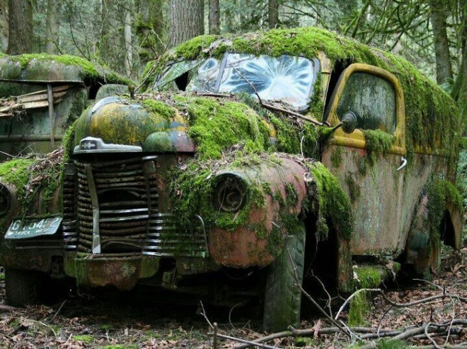 Image result for rusted our vans
