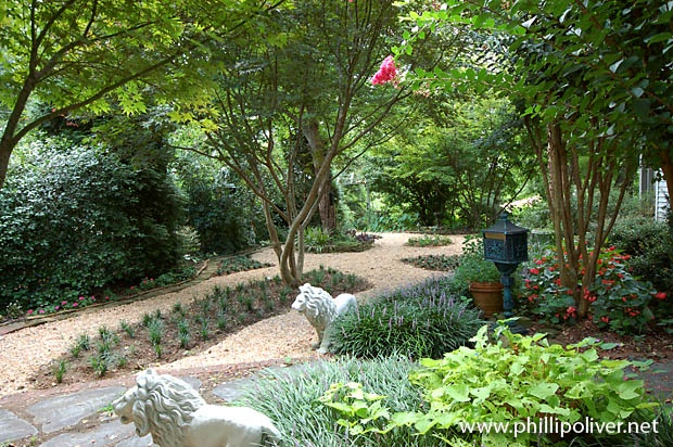 17 Best images about No Mow yards on Pinterest | Free ... on No Mow Backyard Ideas id=73745