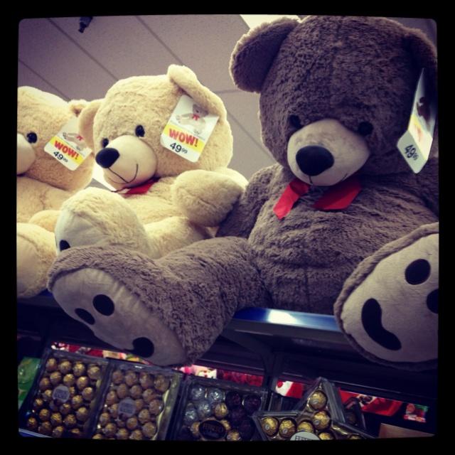 Giant Teddy Bear Keep Seeing Them At Wallgreens