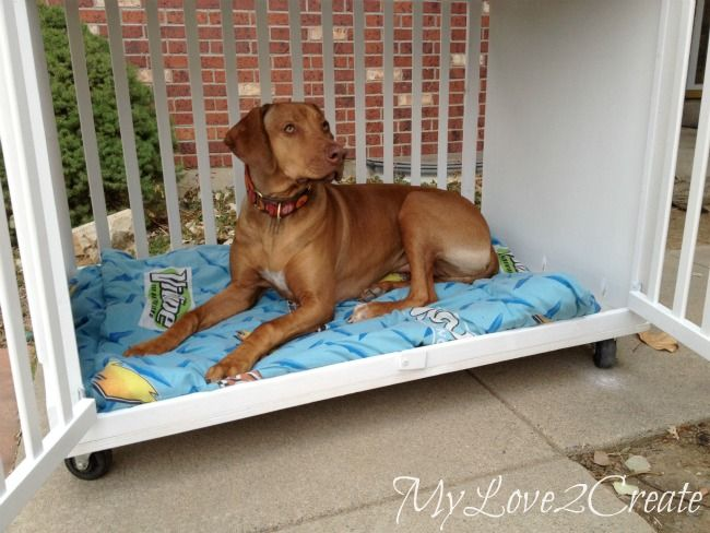 baby crib dog bed