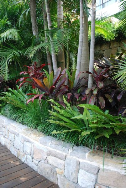 tropical garden design 25+ Best Ideas about Tropical Pool Landscaping on