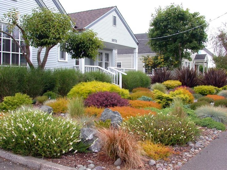 34 best images about Grassless (No mow yards!) on Pinterest on No Mow Backyard Ideas id=78439