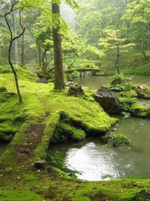 Bridges Park, Ireland:
