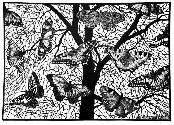 Butterflies Linocut By Katarzyna Cyganik Httpwww