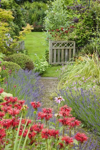 flowers for cottage style gardens 7854 best images about * ⊱Country Cottage Garden (and