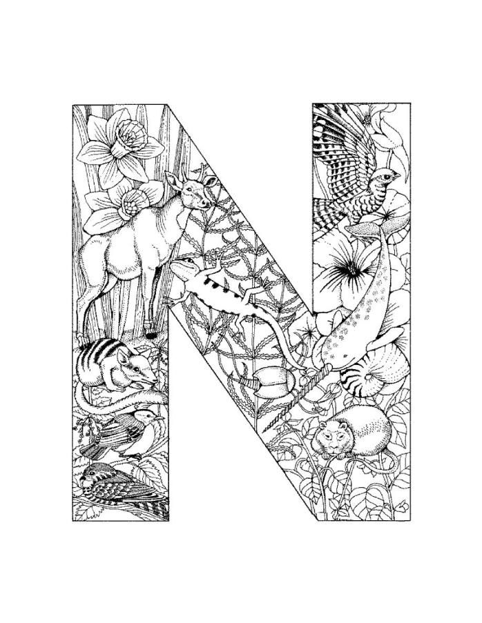 best images about alphabet coloring on pinterest