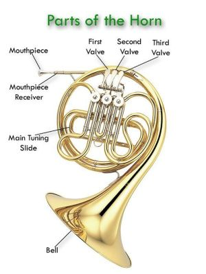 17 Best images about French Horn's Rule on Pinterest